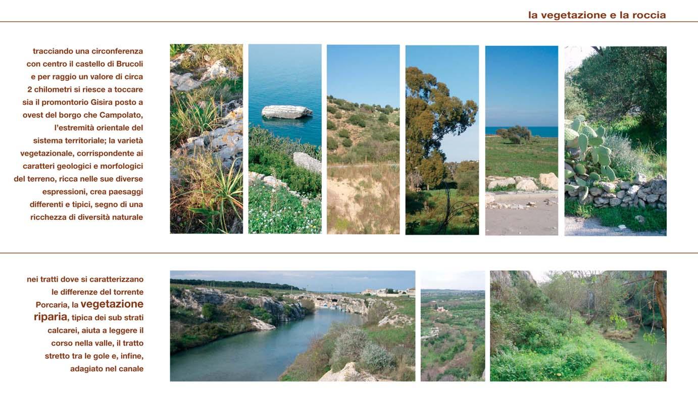 4_foto vegetazione